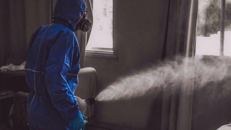 Desinfección profesional con empresa de control de plagas en Mallorca
